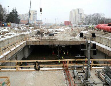 Szczątki mamuta na terenie warszawskiego metra? Alternatywą jeszcze...