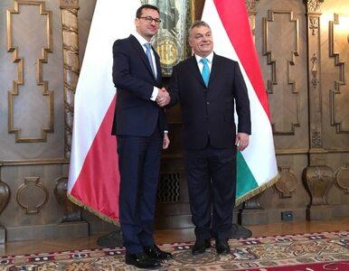 Politycy opozycji o spotkaniu premierów Polski i Węgier