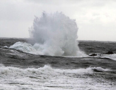 Polski jacht wysłał sygnał SOS. Akcja ratunkowa na Morzu Północnym