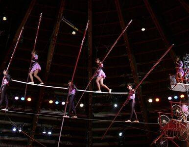 Przerażający upadek akrobatki w cyrku. Spadła z wysokości 11 metrów
