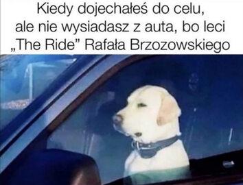 Finał Eurowizji bez Rafała Brzozowskiego. Zobacz najlepsze MEMY