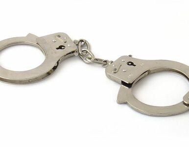 25 zarzutów kradzieży z włamaniem. 33-latek w areszcie