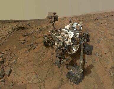 NASA: na Marsie istniało życie