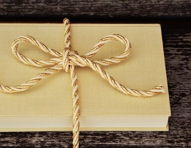 Najlepsze światowe powieści na zimę. 4 książki, po które warto sięgnąć