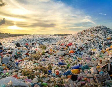 UE zakazała jednorazowych plastikowych sztućców, talerzy i słomek. Mają...