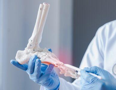 Densytometria, badanie, które ocenia gęstość kości. Kto powinien je...