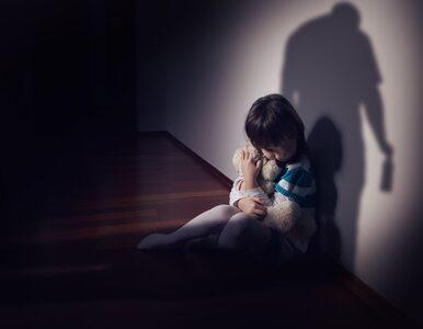 Przewodnicząca Komitetu Ochrony Praw Dziecka: Krzywdzenie dzieci to...