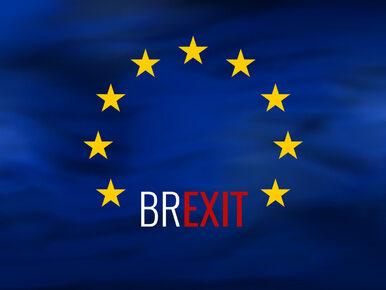 Brexit i co dalej? Ministerstwo liczy na powrót 100-200 tys. Polaków