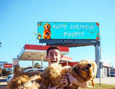 Chciał w wyjątkowy sposób uczcić urodziny swojego psa. Wynajął billboard