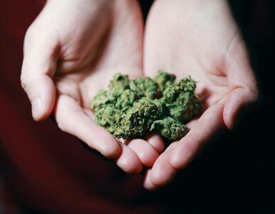 Matki przyznały się do palenia marihuany w ciąży. Skutki dotykały dzieci...