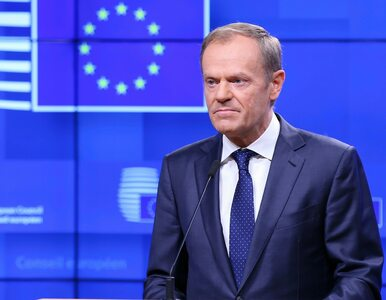 Wspólna lista opozycji w wyborach do PE? Kluczowa może być rola Donalda...