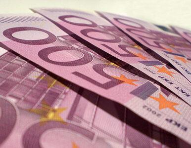 Euro w Polsce? Najwcześniej po 2020 roku
