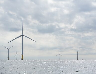 PKN ORLEN wraz z kanadyjskim partnerem zbuduje farmy wiatrowe na Bałtyku