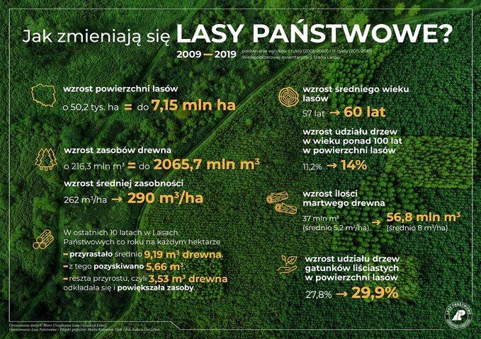 Jak zmieniają się Lasy Państwowe?