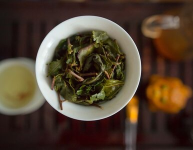 Zielona herbata wspomaga odchudzanie. Fakt czy mit? Jak ją pić, żeby...