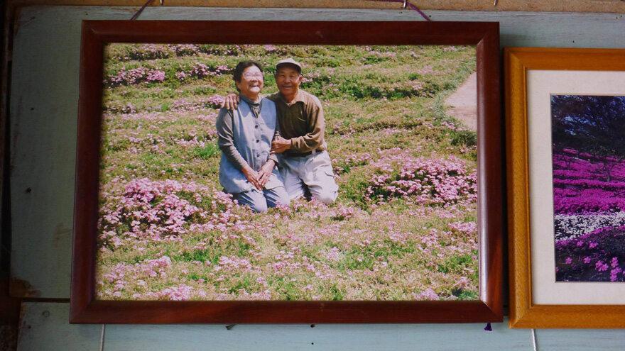 (fot. Yoshiyuki Matsumoto/ boredpanda.com)
