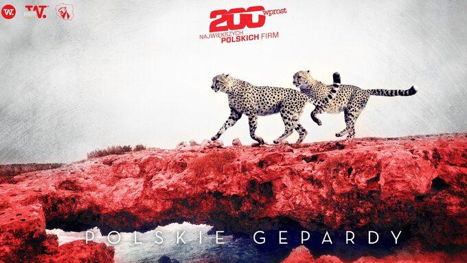 Polskie Gepardy 2021
