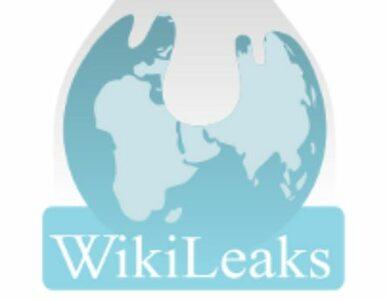 NSA szpiegowała Japończyków. Wikileaks publikuje tajne dokumenty