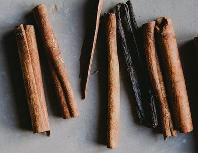 Czym różni się ekstrakt z wanilii od esencji waniliowej? Co jest lepsze?