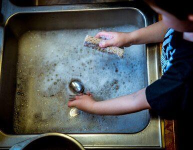 Kiedy należy zmienić gąbkę do mycia naczyń? Odpowiedź może zaskoczyć