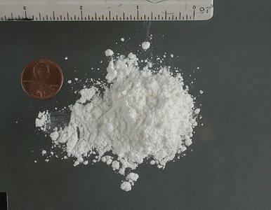 Kokaina za 100 mln dolarów wpadła w ręce afrykańskiej policji