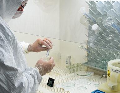 Francuska firma opracowała test, który odróżnia zwykłą grypę od COVID-19...