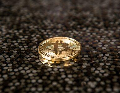 Tobiasz Niemiro nie żyje. Współtwórca upadłej giełdy bitcoinów...