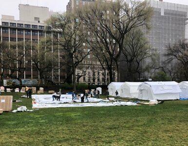 W Central Parku powstaje szpital polowy dla zakażonych. Tysiąc ofiar...