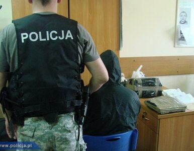 Współpraca polskiej i niemieckiej policji. Zatrzymano 26 pedofilów