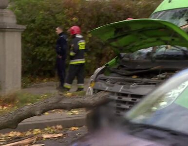 Nawałnice nad Polską. Nie żyją 4 osoby, strażacy interweniowali niemal...
