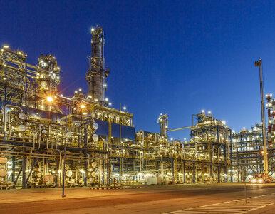 LOTOS wspiera budowę gospodarki wodorowej