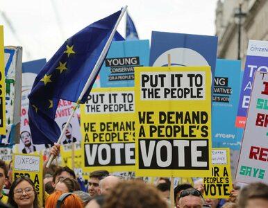 Brytyjski rząd odpowiedział na petycję podpisaną przez 5,8 mln...