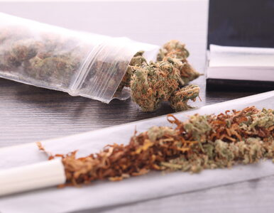 Czy palenie marihuany wpływa na wirusa? Ekspert odpowiada na pytania...