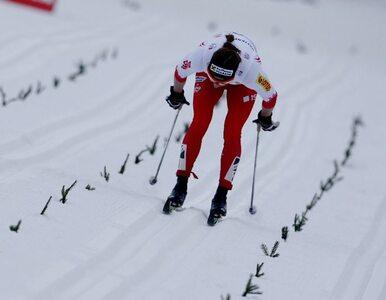 """Kowalczyk nie wystartuje w Tour de Ski. """"Bardzo mi przykro"""""""