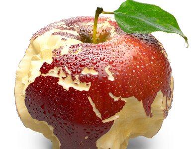 Jabłko – najzdrowszy owoc świata? 10 właściwości prozdrowotnych, o...