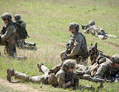 Sondaż: Niemcy nie chcą wzmocnienia wschodniej flanki
