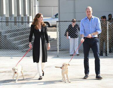 Kate i William bawili się z psami. To zwierzęta do zadań specjalnych