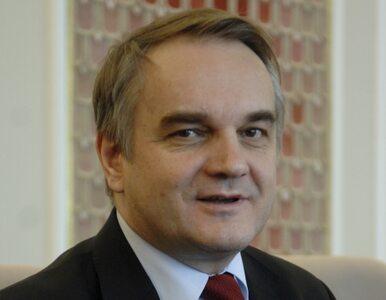 PSL chce wykorzystać sukcesy polskich emigrantów