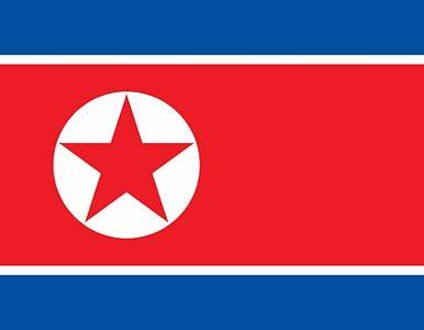 """Korea Północna zagroziła Amerykanom """"bezlitosną odpowiedzią"""". Powodem -..."""