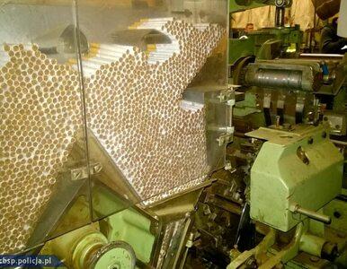 Jedna z największych nielegalnych fabryk papierosów zlikwidowana....