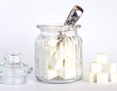 Dlaczego dieta bez cukru pozwala odzyskać przyjemność z jedzenia?