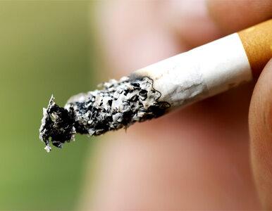 Co najlepiej motywuje do rzucenia palenia? Polacy: Względy finansowe i...