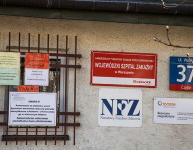 Koronawirus w Polsce. Rekordowa liczba testów w ciągu doby
