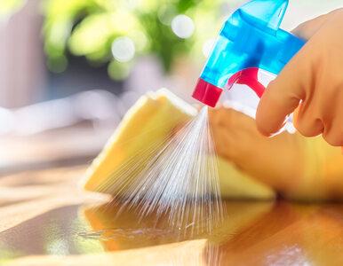 Zarazki, bakterie i grzyby w twoim domu. Gdzie jest ich najwięcej?