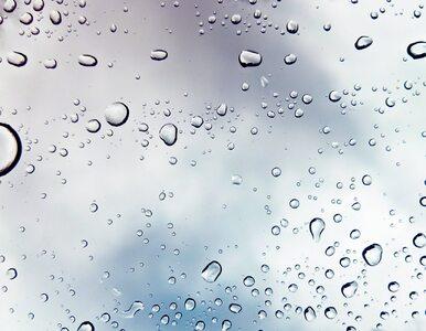 W piątek nadal chłodno. Miejscami przelotny deszcz