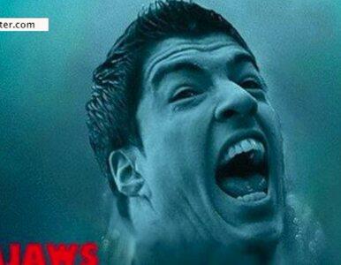 Wampir, rekin, Hannibal. Internet kpi z Suareza
