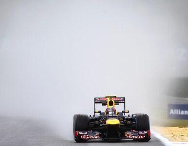 F1: Webber ukarany. Zostanie cofnięty o pięć miejsc