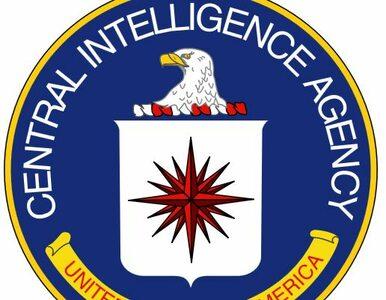 CIA założyło teczkę Chomsky'emu?