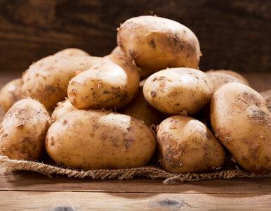 Jak ugotować ziemniaki w mikrofali? Wystarczy zaledwie 10 minut!