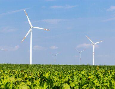 Prezydent podpisał ustawę o promowaniu energii wiatrowej